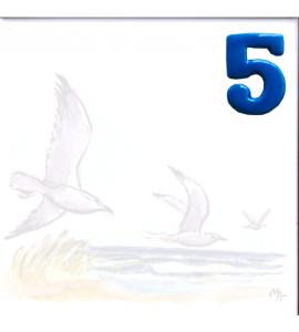 Zahl 5 für Bildfliese